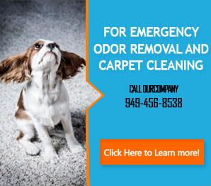 Our Services | Carpet Cleaning Newport Beach, CA